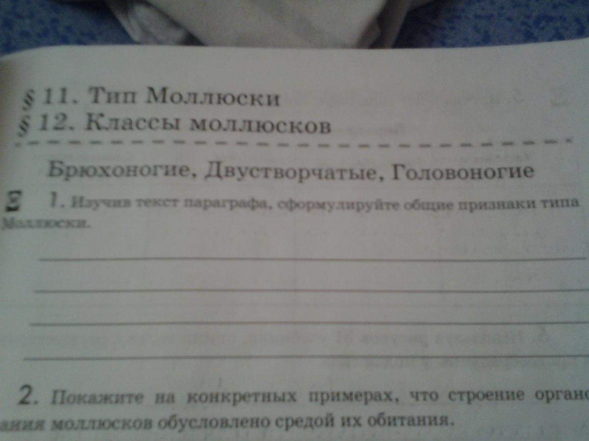Изучив текст параграфа сформулируйте общие прищнаки типа Моллюски?