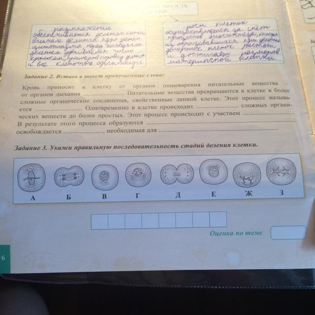 Задание 2 и задание 3 пожалуйста помогите?