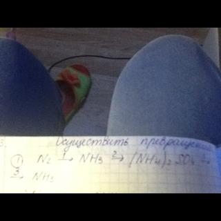Осуществить превращения N2 = NH3 = (NH4)2SO4 = NH3 Цепочка?