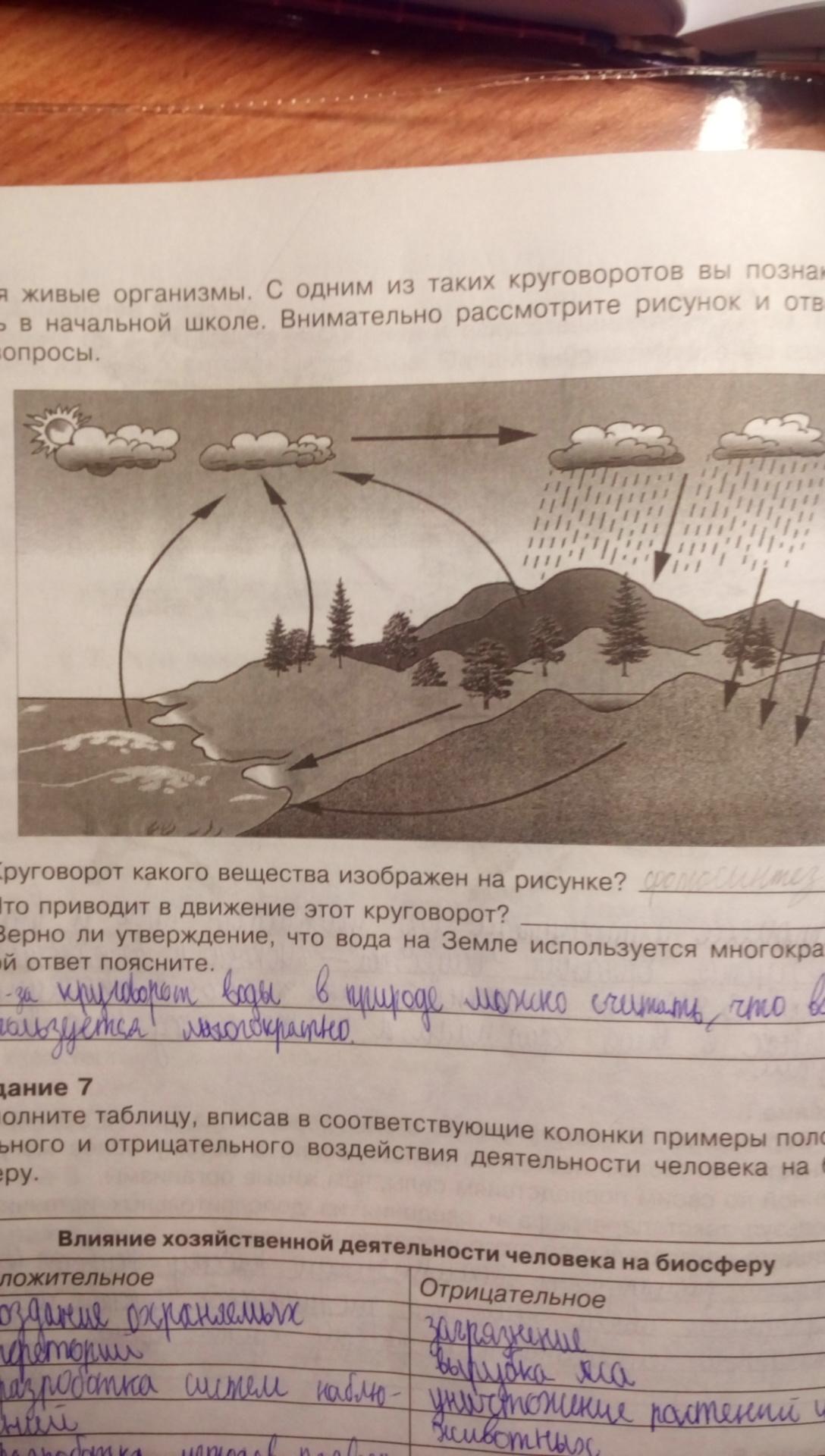 Круговорот какого вещества изображен на рисунке?