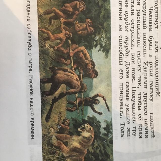Опишите иллюстрацию нападение саблезубого тигра на странице 11 по истории рисунок нашего времени?
